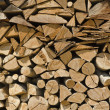 The wood is ready for the winter - Stock Photo