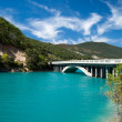 Lac de Castillon — Stock Photo #12496654