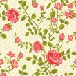 Blooming roses seamless pattern - Vettoriali Stock