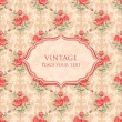 Background with roses — Imagen vectorial