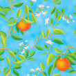 Orange blooming — Stock Photo