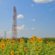 Telecommunication tower — Stock Photo #19659421