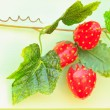Strawberry — Stock Photo #25782389