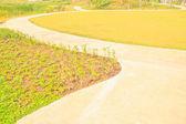 Fußweg — Stockfoto