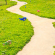 Pathway — Stock Photo #29887671