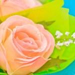 Rose — Stock Photo #30211085