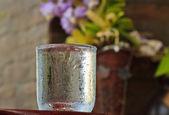 Vodní sklo — Stock fotografie