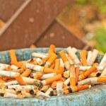 Cigarette butt — Stock Photo #33562359
