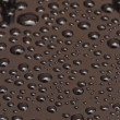 Drops — Stock Photo #33915093
