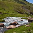 Stock Photo: Kyrgyz mountain river landscape