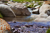 Kyrgyz mountain river nature — Stock Photo