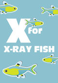 X for the X-ray fish, an animal alphabet for the kids — Stock Vector