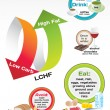 Diet Low Carb High Fat (LCHF) infographic — Stock vektor