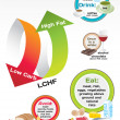 Diet Low Carb High Fat (LCHF) infographic — Imagen vectorial