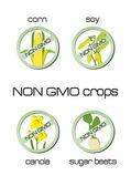 Non GMO crops set of signs for corn, soy, canola, sugar beets — Stock Vector