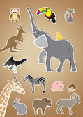 Cartoon style animals: owl, toucan, cat, elephant, kangaroo, vol — Stock Vector