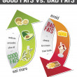 Vector de stock : Good fats and bad fats, polyunsaturated and monounsaturated fats