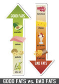 Good fats and bad fats, polyunsaturated and monounsaturated fats — Cтоковый вектор