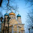 Orthodox church — Stock Photo #12512600