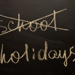 School holydays — Stock Photo #12513429