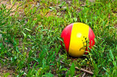 Ball on the green grass — Stock Photo