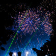 Firework — Stock Photo #13715296
