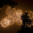 Firework — Stock Photo #13715310