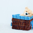 Cuddly toy bear in the webbed basket — Stock Photo