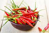 Frische chili — Stockfoto