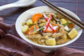 Egg noodle with chicken and mushroom gravy sauce — Foto Stock