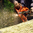 Chainsaw cutting wood - Stok fotoğraf