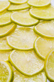 Lime slices — Stock Photo