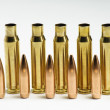 Rifle bullets separated — Stock Photo