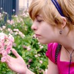 Girl with a rosebush, rosebush, blonde with flowers — Stock Photo #12523387