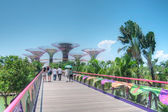 Gardens by the Bay, Singapore — Stock Photo