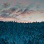 Winter twilight in Hokkaido, Japan — Stock Photo