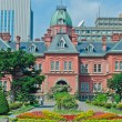 Old Hokkaido Government Building, Japan — Stock Photo