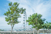 The Helix Bridge and The Singapore Flyer — Stock Photo