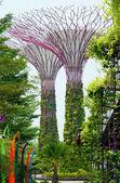 后代,湾花园 — 图库照片