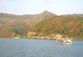 Nami Island, South Korea — Stock Photo