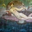 Mural of Venus on the wall of a Pompeii house — Stock Photo