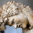 Dying Gaul — Stock Photo #12891693