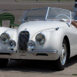 1949 Jaguar Convertible — Stock Photo