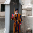 Vatican Swiss Guard - Stock Photo