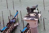 Column of San Marco in Venice, Italy — Stock Photo