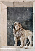 The lion of St Mark — Stock Photo