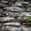 Ancient Mayan wall — Stock Photo