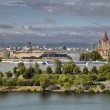 Danube Island — Stock Photo #13504595