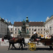 Horse drawn carriage in Vienna - Stock Photo