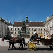 Horse drawn carriage in Vienna — Stock Photo